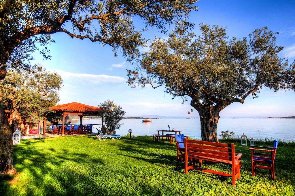 Апартаменты греция ситония